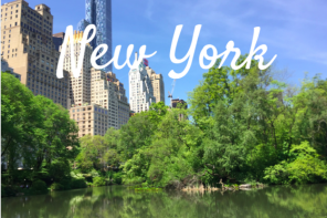 Follow me to New York I Central Park & Walkingtour